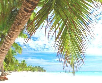 Sezon Otdyha I Sezon Dozhdej V Dominikane